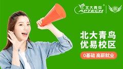南京北大青鸟优易UI设计师