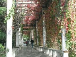 北京博雅环球教育科技有限公司环境