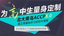 ACCP软件开发工程师