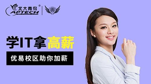 南京北大青鸟优易ACCP软件工程师